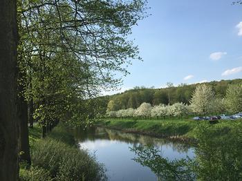 boomgaard in bloesem bij kasteel Doorwerth