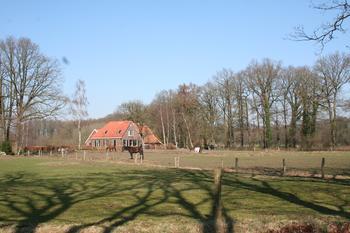 landschap winterwijk