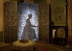 kamerscherm met silhouet vrouw