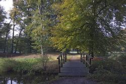 herfstlandschap landgoed Warnsborn